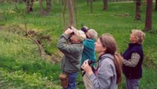 Bucks County Top Spot for Birdwatching in Pennsylvania