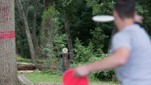 Disc golf, Chester County