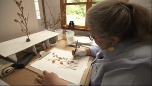 Carol Ashton-Hergenhan Bensalem artist
