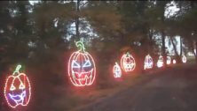 lit pumpkins in a line